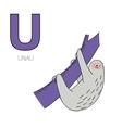 Alphabet letter U unau children vector image
