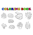 coloring book of beautiful coral collection vector image