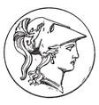right minerva head vintage vector image