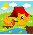 cat on camping vector image vector image