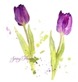 card with watercolor tulips vector image