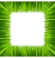 border frame green grass isolated on white vector image
