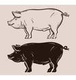 pig logo farm pork or piggy icon vector image