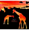 Giraffe Animal Watercolor Background vector image vector image