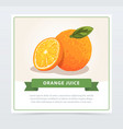 hand drawn orange with slice and green leaf vector image