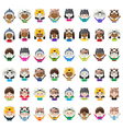Animal hat avatars vector image