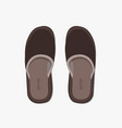 modern flippers on gray bakground vector image vector image