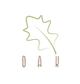 oak leaf abstract outline design template vector image