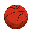 ball basketball sport equipment vector image