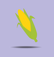 Corn vegetable icon vector image