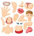 Human body parts icons set vector image