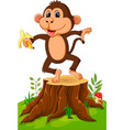 cartoon monkey playing in the forest vector image