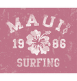 Maui Bay surfing vector image vector image