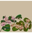 Card with tropic flower - orchid vector image