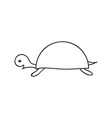 Doodle turtle animal icon vector image
