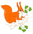 squirrel sitting on the tree vector image