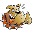 Cartoon of an excited Bull Dog giving Thumb Up vector image vector image