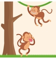 Monkey cartoon design vector image