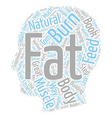 Burn The Fat Feed The Muscle Review text vector image