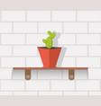 houseplant design flat concept vector image