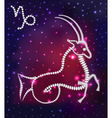 cosmos of the stars of the constellation Capricorn vector image vector image