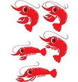 shrimp cartoon vector image