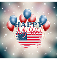 USA independence day vector image vector image