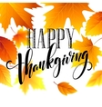 Hand drawn inscription thanksgiving calligraphy vector image