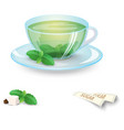 transparent cup of green tea with mint and sugar vector image