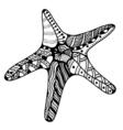zentangle starfish vector image