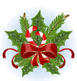Christmas holly berry branches and bow isolated - vector image vector image