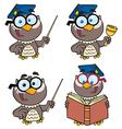 Owl Teacher- Collection vector image