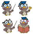 Owl Teacher- Collection vector image