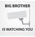 Big brother vector image