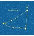 Capricornus Zodiacal Constellation vector image