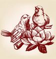 lovers of birds sitting on a branch hand drawn vector image