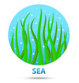 sea nature icon vector image