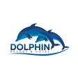 dolphinarium dolphin logo resort and hotel vector image