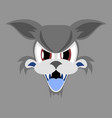 flat icon on theme angry cat animal vector image