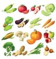 Fresh Vegetables Icon Set vector image