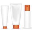 Set of cosmetic tubes vector image
