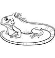 iguana cartoon coloring book vector image