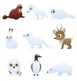 Set Arctic animals vector image