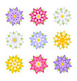 set of flat colored abstract flowers isolated vector image