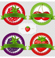 berry labels vector image