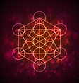 Metatrons Cube - Flower of Life vector image