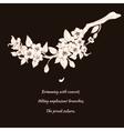 Sakura cherry on black background vector image