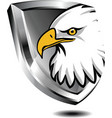 silver shield with eagle vector image vector image