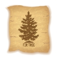 Christmas Fir Tree on Old Paper vector image