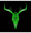 Deer skull 3d style for print tattoo t vector image